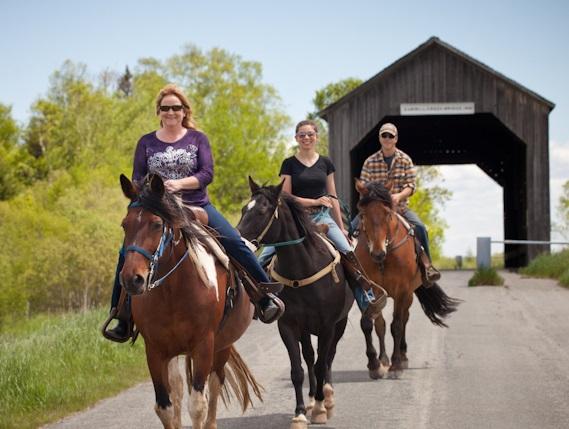 Horseback Riding/Trail Rides